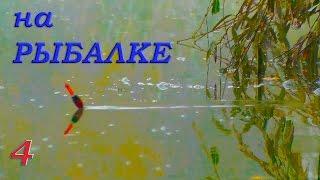 Рыбалка. Видео Зарисовки из моего канала. Ловля на поплавок и донку карася, тарани, окуня, судака.