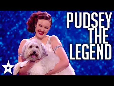PUDSEY missed but never forgotten! WINNERS of Britain's Got Talent 2012