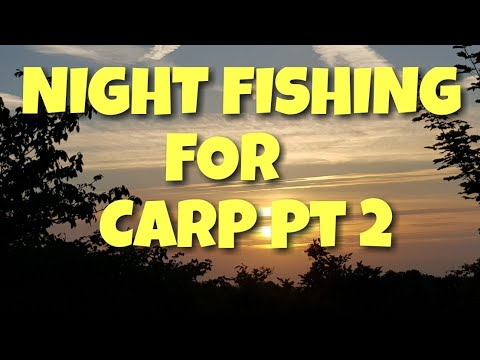 **Night Fishing** For Canal Carp Part 2:  The Hunt Begins