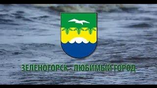 Зеленогорск - любимый город