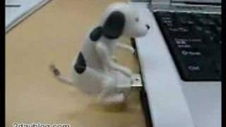 USB Humping Dog, plug it in your USB port and start to laugh.
