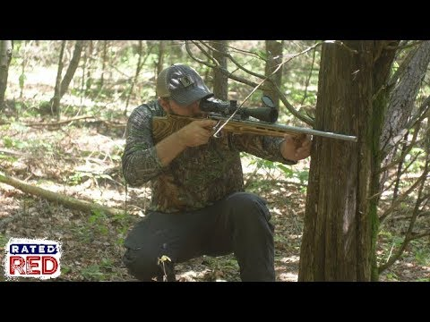 Squirrel Hunting Tips & Tricks