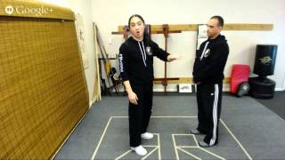 The Complete Wing Chun Sil Lum Tao Breakdown Part 1