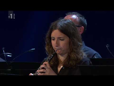 Bethoven Piano Concerto No.4  Petar Milić RTV Slovenia Symphony Orchestra