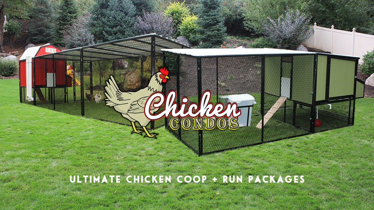 Ultimate Chicken Coop Run From Chicken Condos Youtube