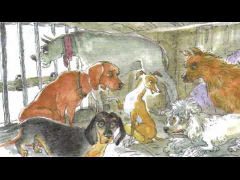 Мультфильм собачье счастье