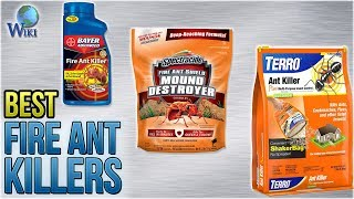 10 Best Fire Ant Killers 2018