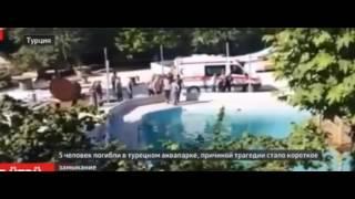 Пять человек, включая двоих детей, погибли в аквапарке в Турции от удара током