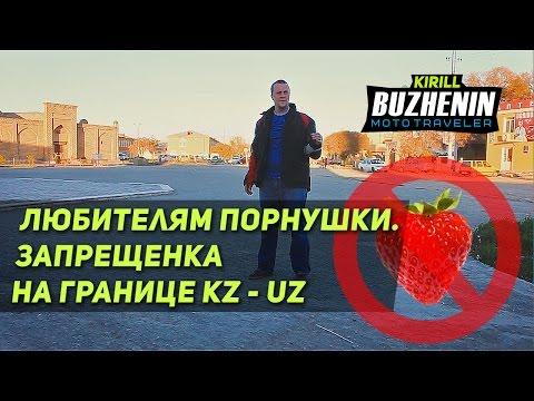 Поиск порно на погранпереходе Казахстан - Узбекистан