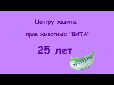 Центру защиты прав животных ВИТА - 25 лет