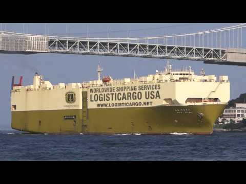Logisticargo USA - Ocean Shipping