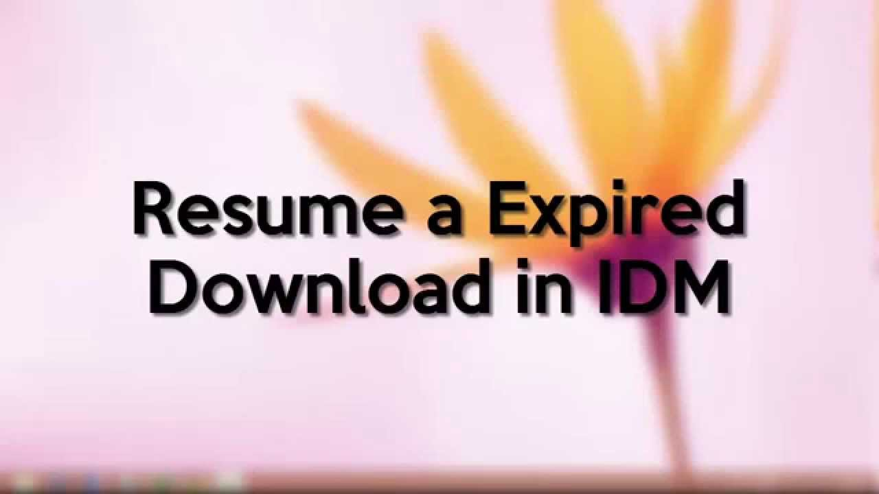 how to resume a expired file download in idm youtube