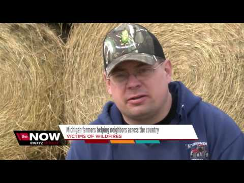Michigan farmers helping neighbors across the country