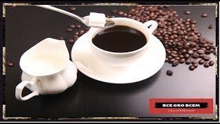 Где больше кофеина, в чае или кофе?