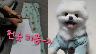 헌옷 리폼/강아지옷 만들기(준비물:안입는옷)