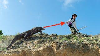 10 Animals That Hunt Humans