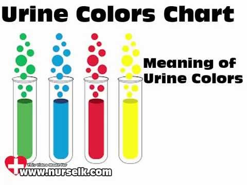 Urine Colors Chart Meaning Of Urine Color - Youtube
