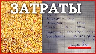 Затраты и доход на выращивании Кукурузы! Бизнес в селе на кукурузе!(, 2016-12-03T06:30:00.000Z)