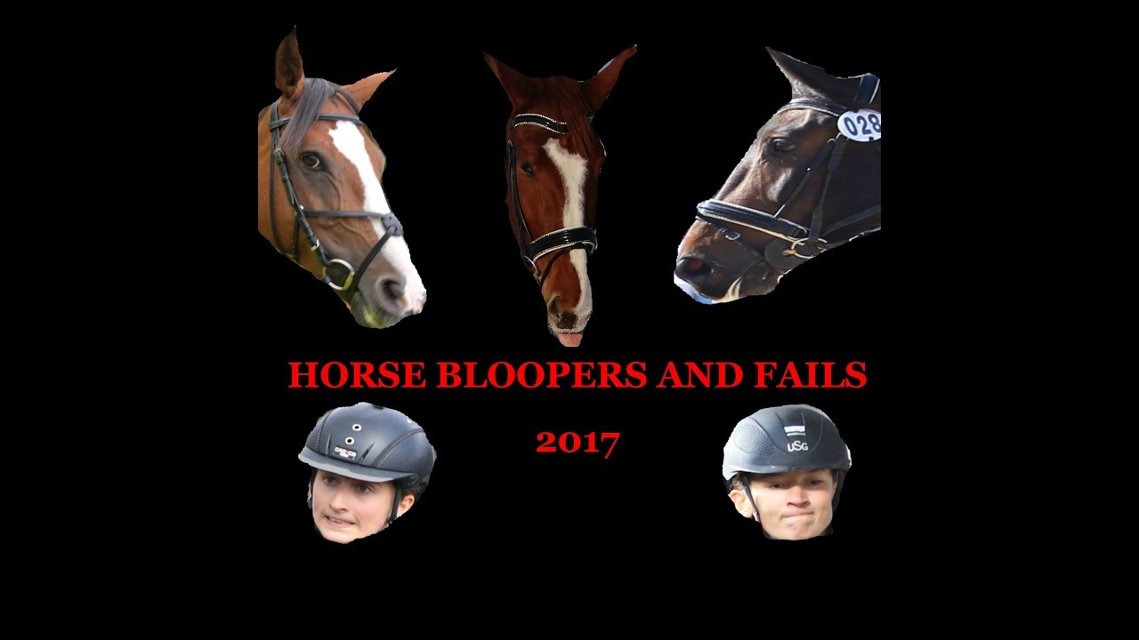 Horse bloopers and fails 2017