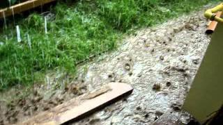 venetia din valenii de munte :-( (partea a IIa)