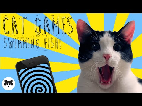 CAT GAMES  Entertaining Videos for Cats  SWIMMING FISH!
