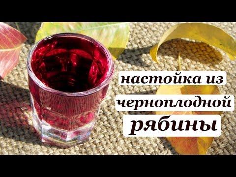 Черноплодная рябина вино в домашних условиях на водке