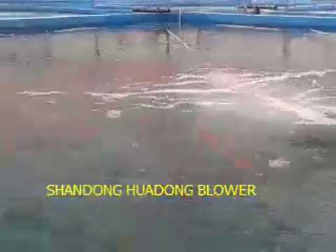 high density shrimp pond oxygen supply-aerator