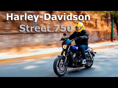 Harley-Davidson Street 750 - la más pequeña de la familia | Autocosmos