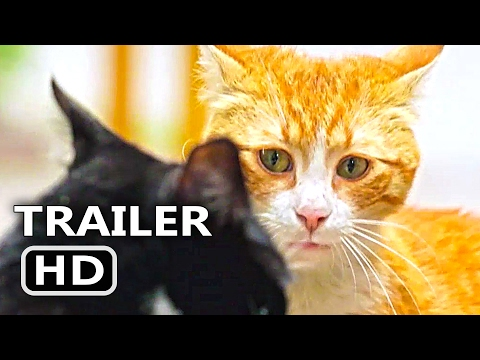 Thumbnail: KEDI Official Trailer + Clip (2017) Cats Documentary Movie [HD]