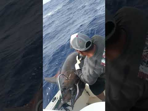 Fishing Marshall Islands