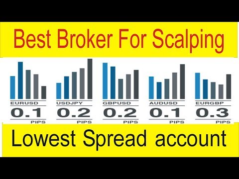 Lowest Forex account For Scalping and Hedging ! Best Forex Trading Broker in Urdu Hindi by TaniForex
