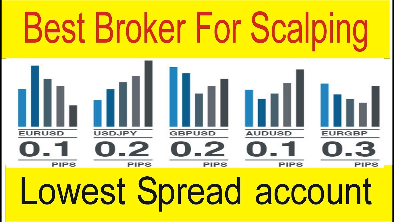 Lowest Forex Account For Scalping And Hedging Best Trading Broker In Urdu Hindi By Taniforex