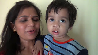 Karwa Chauth Vlog 2017