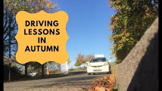Online Driving Lesson for Beginners
