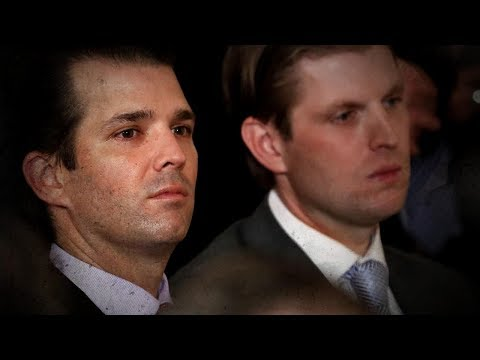 Donald Jr., Eric Trump take on their dad's critics