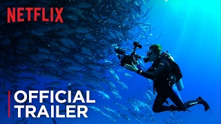 Mission Blue - Official Trailer - Netflix [HD]