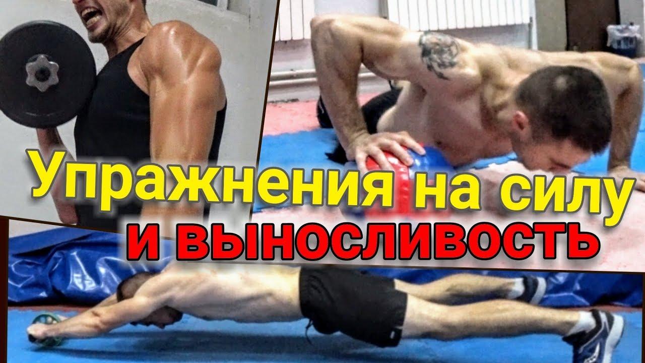 Тренировка на развитие силы и выносливости, бокс