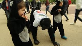 'Gorilla Man' Finishes 6-Day UK Marathon Crawl