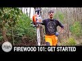 Firewood 101: Selecting Trees, Chainsaw Basics, and Simple Wood Storage to Get You Started Now