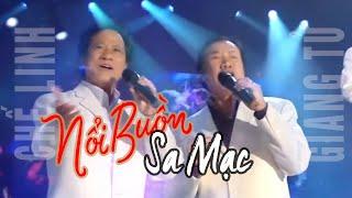 Nổi Buồn Sa Mạc - Show Hè Trên Xứ Lạnh - Giang Tử | Vân Sơn 47