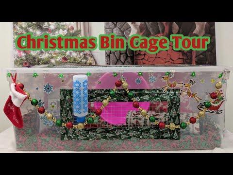 Christmas Tree Bin Cage.Hamster Christmas Themed Bin Cage Tour