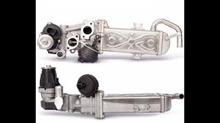 volkswagen 1 6 tdi egr valve cleaning