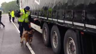 Aanhoudingen door marechaussee tijdens grensverkeerscontrole