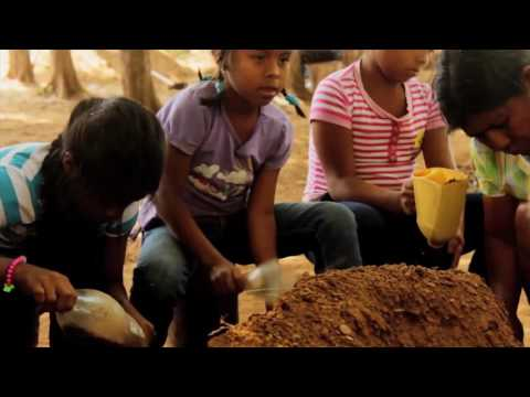 MacArthur Foundation's 100 & Change Competition: A New World Wide Social Fabric From Panama
