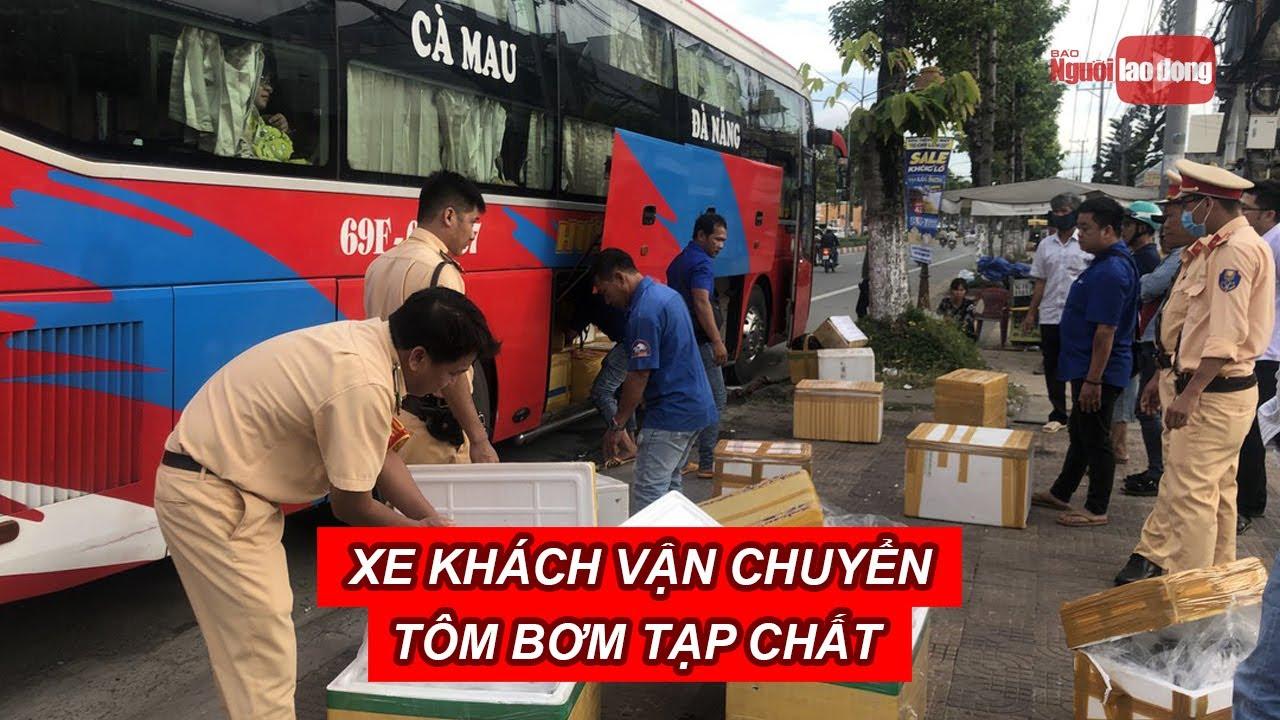 Bạc Liêu: Liên tiếp phát hiện xe khách vận chuyển tôm bơm tạp chất