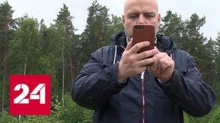 Новейшие технологии воровства: мошенники вскрывают мобильный банк, подделывая сим-карту - Россия 24