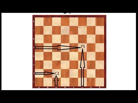 Шахматы С нуля - 1 урок