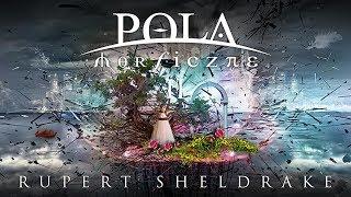 POLA MORFICZNE - CZĘŚĆ 2 - TEMATY RUPERTA SHELDRAKE'A
