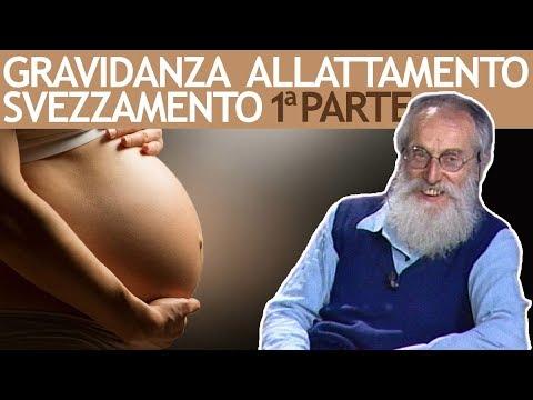 dott.-mozzi:-gravidanza,-allattamento,-svezzamento-vol.-1-di-3
