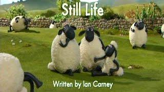 笑笑羊【畫畫羊】Still Life.